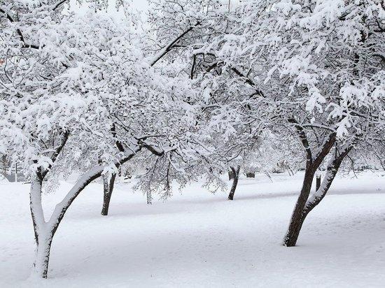 Метеорологи предсказали аномально снежную зиму в России
