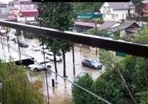 В Адлерском районе Сочи из-за непогоды подтопило несколько участков домовладений и повалило дерево