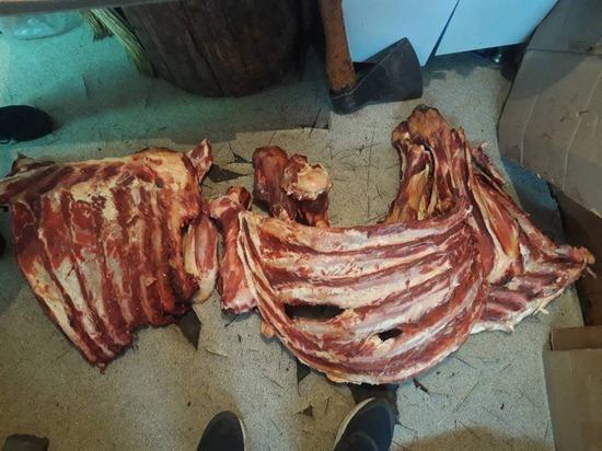 Оперативники Тувы задержали подозреваемых в хищениях скота