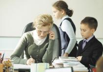 К освобождению учителей от лишней бумажной работы в соответствии с поручением президента Путина приступило Минпросвещения