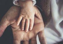 Укрепит институт семьи или его постигнет судьба Дня матери