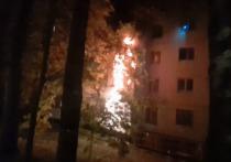 Эпицентром страшного ночного пожара в Сумском проезде, в котором погибли 40-летняя женщина и 10-летняя дочь, была квартира на 2-м этаже, где проживали неблагополучные жильцы