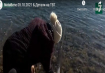 На гидропосту аала Райков похитили датчик уровня воды