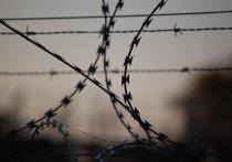 По факту избиения заключенного в колонии Ефремова возбуждено дело