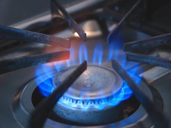 Пять стран Европы начали расследовать причину подорожания газа