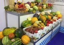 Астраханская область в седьмой раз принимает участие в ежегодной агропромышленной выставке «Золотая осень-2021»