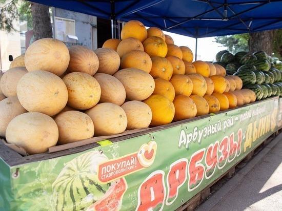 Ставропольский губернатор отметил выгоду и удобство продуктовых ярмарок