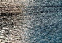 Один человек утонул, еще один — пропал: катамаран перевернулся в Тазовской губе на Ямале