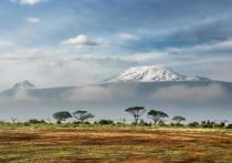 Изменение климата в раннем олигоцене привело к вымиранию 63% животных Африки