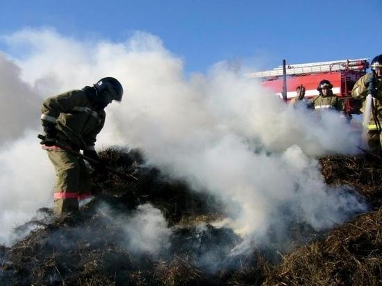 На чабанской стоянке в Туве сгорело 100 тонн заготовленного сена