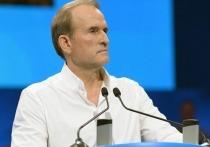 Украинский олигарх Виктор Медведчук, который возглавляет крупнейшую на Украине партию «Оппозиционная платформа – За жизнь», получил новую порцию обвинений со стороны украинский властей