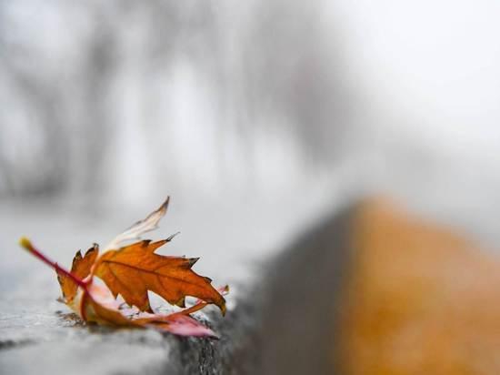 В выходные в Волгоградской области усилятся ночные заморозки