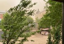 Девочка, на которую в пыльную буру в Астрахани упал тополь, стала инвалидом