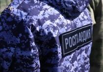 В Волжске задержан мужчина, укравший товар из магазина