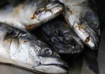 В борьбе с воспалениями эффективна жирная рыба, пишет Harvard Health Publishing