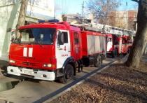 В Ряжском районе Рязанской области сгорела машина, есть пострадавший