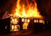 При пожаре в загородном доме под Лугой погиб человек