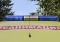 В субботу, 9 октября, на 111-м км трассы Самойловка − Шумилинская Toyota Alphard столкнулся с КамАЗом с полуприцепом