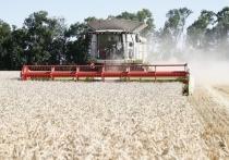 Вениамин Кондратьев поздравил работников сельского хозяйства с профессиональным праздником
