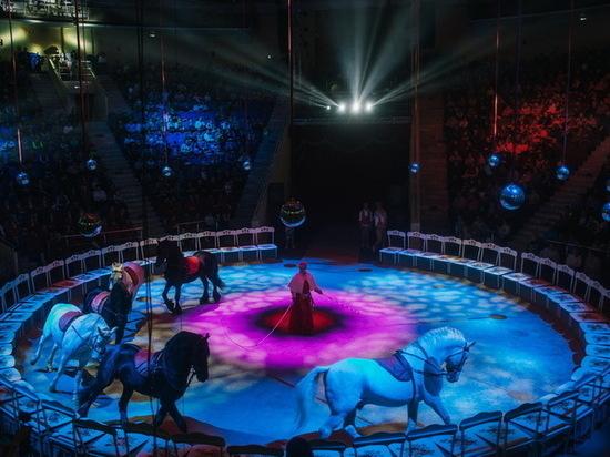 Цирк в Иванове даст последнее выступление 17 октября