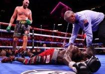 WBC: Фьюри может начать переговоры о поединке с Усиком