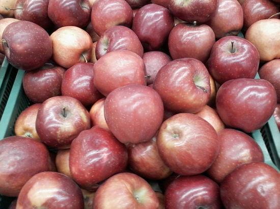 В магазинах Саратова резко подорожали яблоки