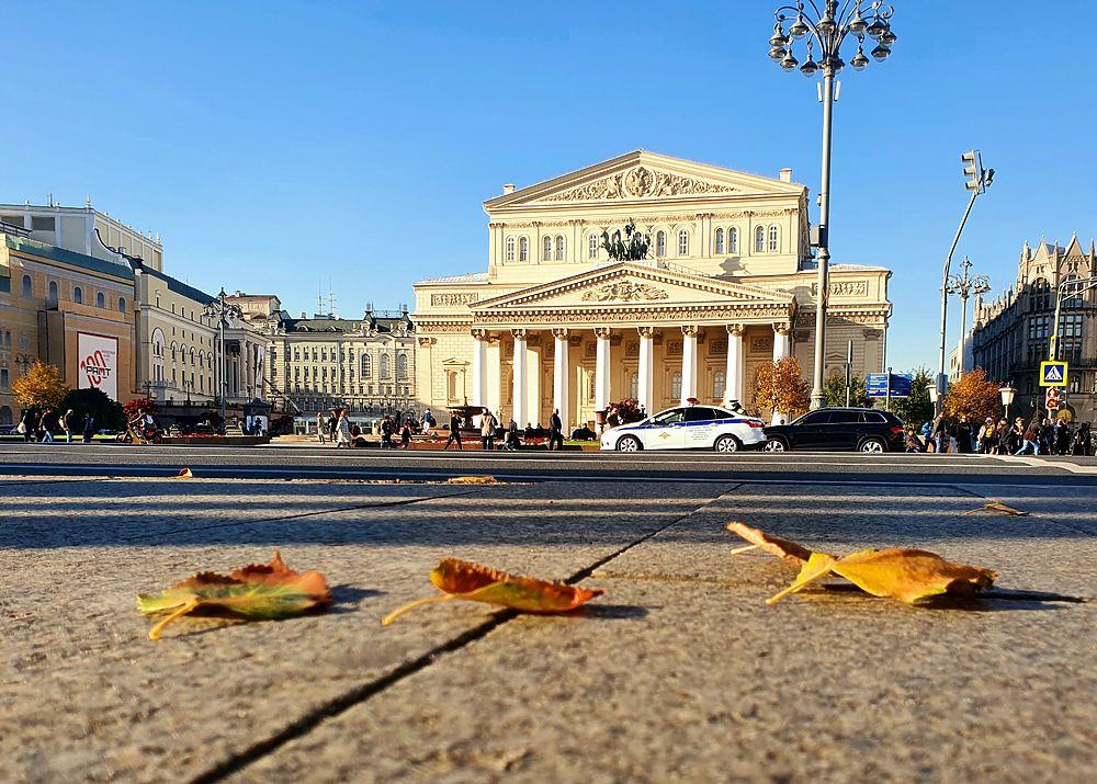 Москва наслаждается золотой осенью: кадры с улиц
