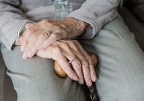 Эксперт по пенсионным вопросам Сергей Звенигородский в беседе с радио Sputnik рассказал, что потерявшие супругов россияне имеют право на получение их пенсий