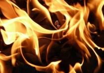 Пожары в ЛНР унесли жизни двоих жителей