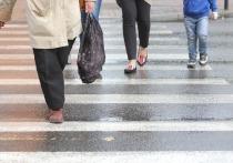 Наталья Комарова пожелала представителям власти почаще ходить пешком