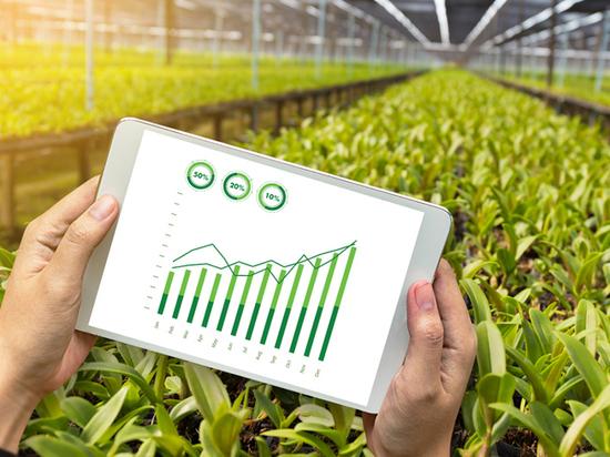 «Золотая осень»: нейросети и роботы повысят урожайность теплиц и садов на 20-30% - Россельхозбанк