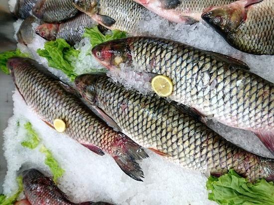 Well and Good: долголетие человека кроется в простой рыбе