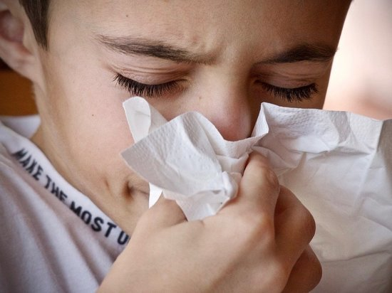Заболеваемость ОРВИ в Марий Эл на 34% выше порогового уровня
