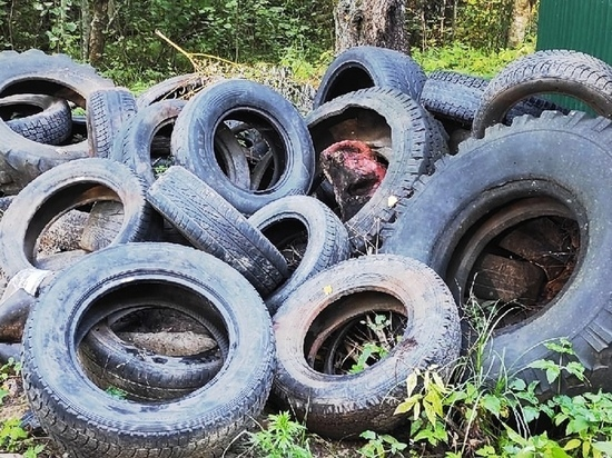 Недопустимо, чтобы скопление мусора посреди города столь продолжительное время оставалось вне внимания