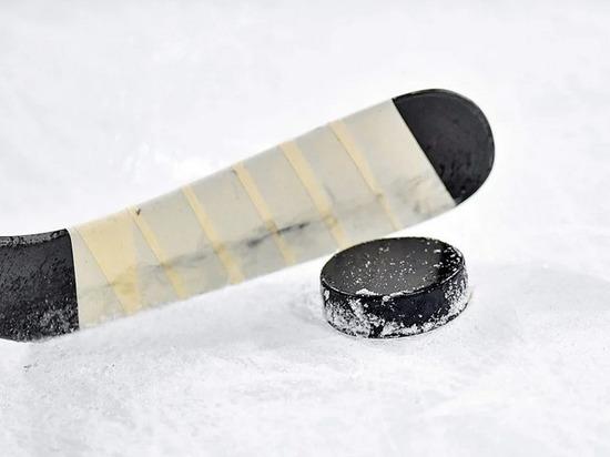 Хоккеисты из Брянска уступили команде «Россошь»