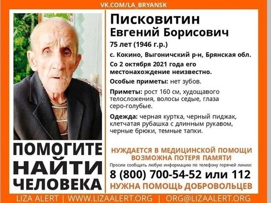 На Брянщине нашли мертвым пропавшего пенсионера