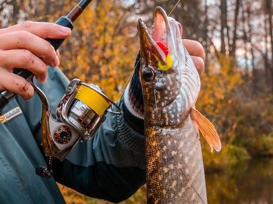 Туманы и неспокойная вода: в МЧС Ямала северянам рассказали об опасности осенней рыбалки