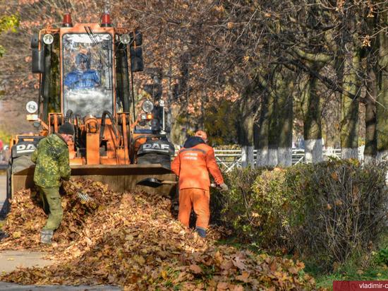 Около 152 тонн мусора вывезли из Владимира после общегородского субботника