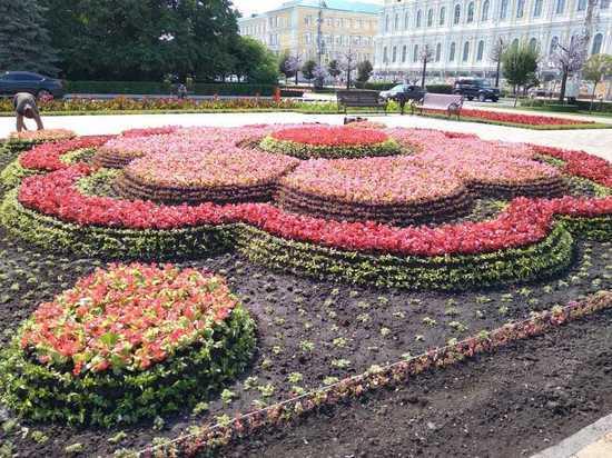 Сотни тысяч цветов и деревьев высадят в Ставрополе до конца осени