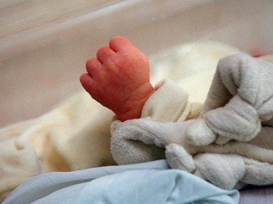 В Иванове волонтеры-зоозащитники случайно спасли младенца из Костромы