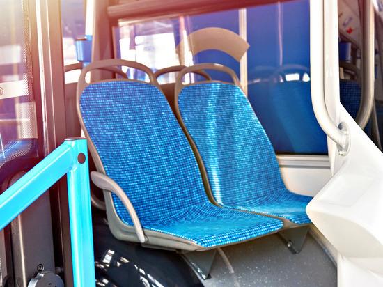 Проезд в общественном транспорте Новгорода может подорожать