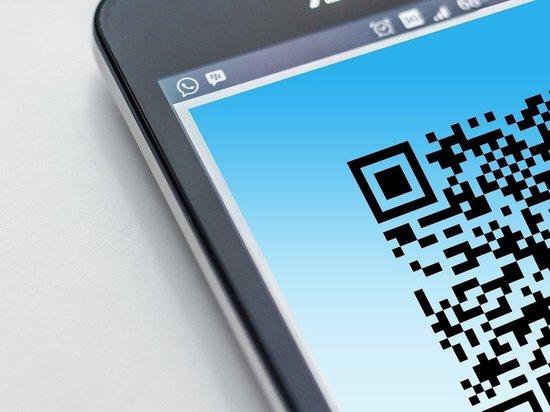 Роспотребнадзор настаивает на введении QR-кодов в Забайкалье