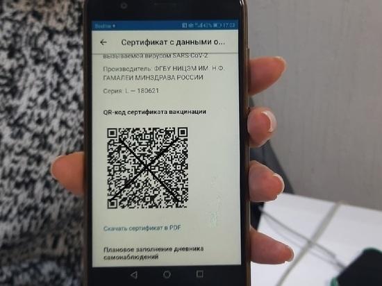 QR-коды вводятся в Новосибирске с 25 октября: полный список мест, куда не пустят без кода