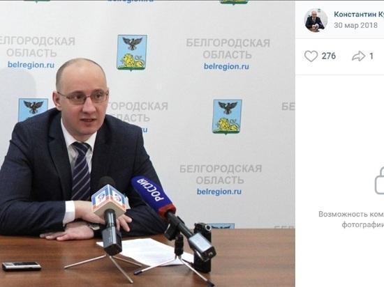 Константин Курганский временно заменит Наталию Зубареву на посту замгубернатора Белгородской области