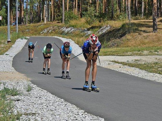 В Ярославском районе построят лыжероллерную трассу