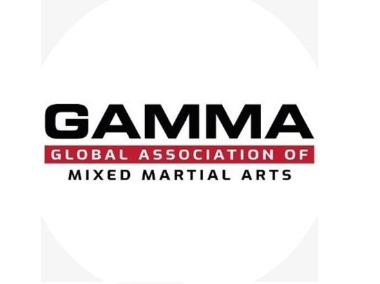 Российских бойцов ММА не пустили на чемпионат Европы в Киеве