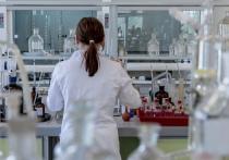 МВД подготовило поправки в КоАП, согласно которым следить за аспирантами-иностранцами придется научным организациям