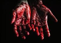 Желая отомстить за сестру, житель Башкирии едва не убил ее парня