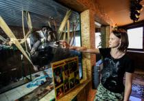 С 1 января 2022 года все российские зоопарки, зоосады и прочие организации, содержащие животных и показывающие их посетителям за деньги, должны иметь лицензию на данный вид деятельности