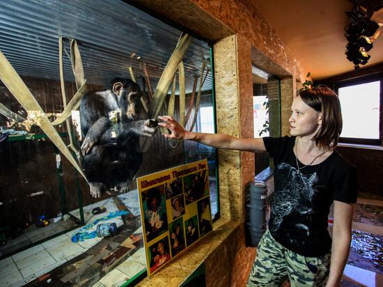 Иркутские зоогалереи и зоопарки должны получить документ, позволяющий деятельность